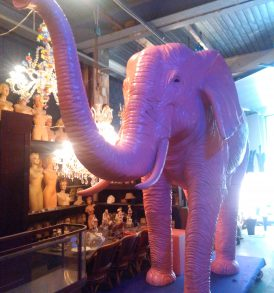 Pink Elephant1